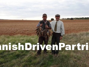 Red-legged partridge driven shooting in Spain