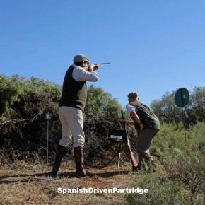 Spanishdrivenpartridge - red legged partridge