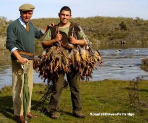 spanishdrivenpartridge - red-legged partridge hunting in spain
