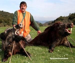 spanishdrivenpartridge - spanish driven hunt, monteria