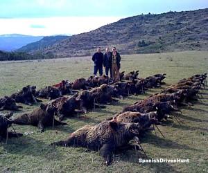 spanishdrivenpartridge - driven hunt, monteria