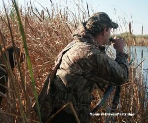 Spanishdrivenpartridge - duck shooting in Spain