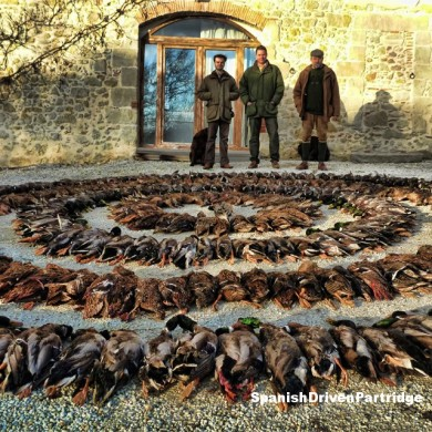 Spanishdrivenpartridge - duck shooting in Spain